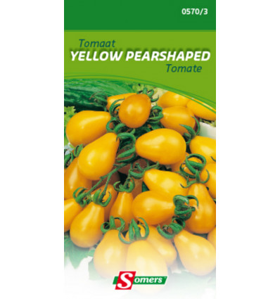 Somers Tomaat Yellow Pearshaped