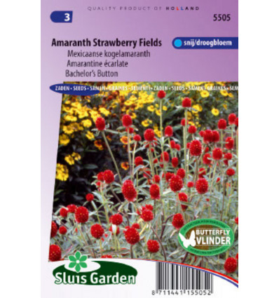 Kogelamaranth Strawberry fields ( Gomphrena) 0,5 g BLOEMEN EENJARIG