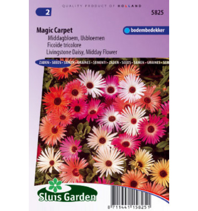 IJsbloem Magic Carpet mix (Middagbloem) 1 g BLOEMEN EENJARIG